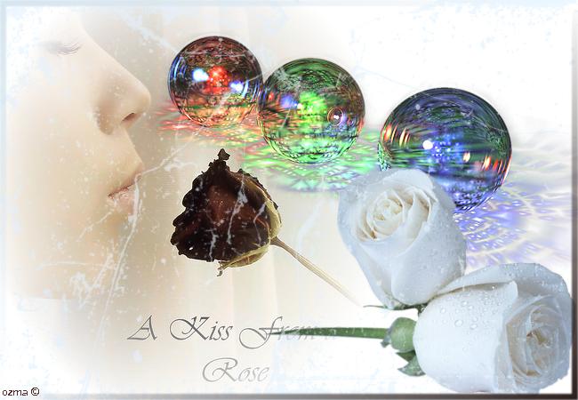 ma galerie Rose-2851139