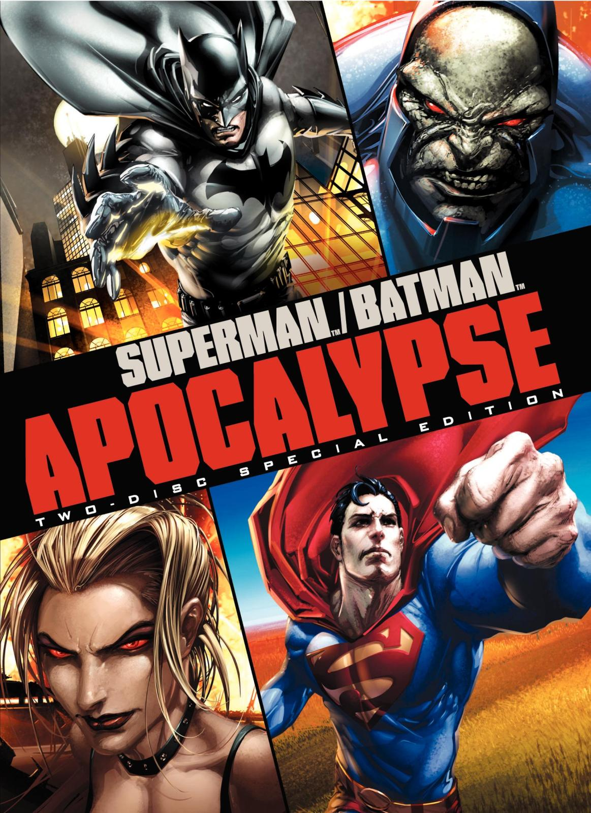 Ver Superman Batman Apocalypse (2010) online