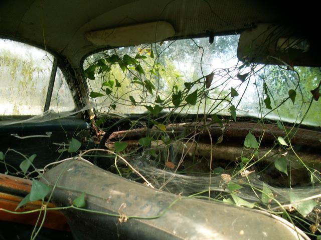 cox-en-corse-cabriolet-009-2831e0a.jpg