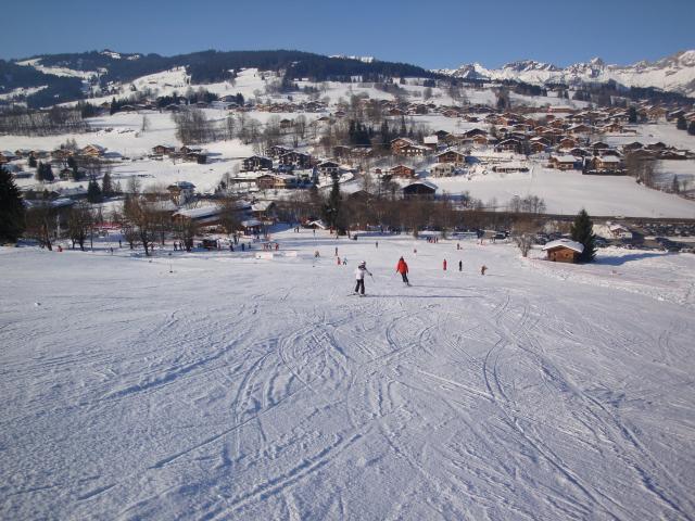 Grand bois; Megève Mont d'arbois Dsc00584-9608d9