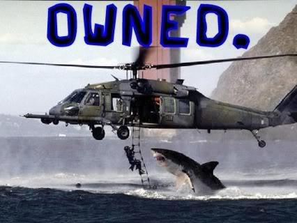 owned-shark-168155a.jpg