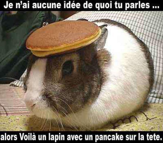 http://img41.xooimage.com/files/c/5/6/209184lapin_pancake-1debdf7.jpg