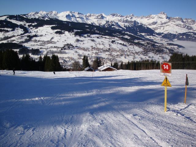 Grand bois; Megève Mont d'arbois Dsc00567-9606aa